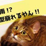 【検証済】軟毛・猫っ毛におすすめのメンズヘアワックス3選 !