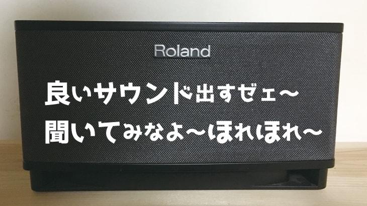 安くて高音質なギターアンプ&オーディオスピーカー【Roland CUBE Lite】